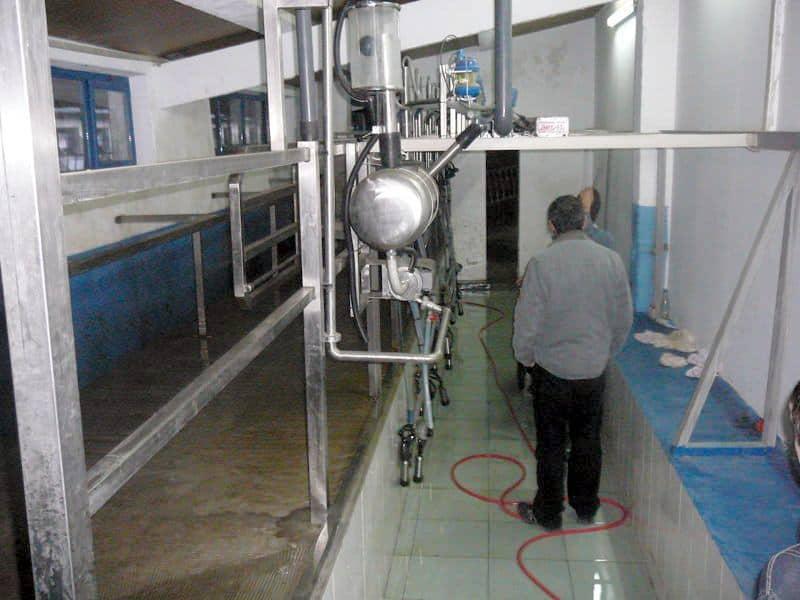 Ferma de vaci de vanzare in jud Buzau
