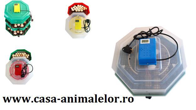 Incubator de oua Cleo 5 pentru oua de prepelita,oua de gaina,oua de rata oua de gasca,oua de curca