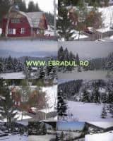 Cabana Mickhaela(lemn 140mp) si teren 12.000mp in Toplita, Harghita