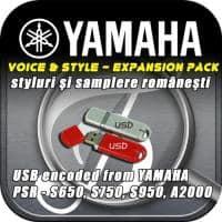 Program semplat pentru Yamaha seria S si A2000
