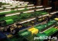 Muncitori  pentru fabrica – 1400 Euro