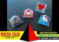 Bijuterii Rudraksha Process Color