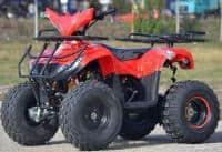 Model:Atv Yamaha 2w4 Tre-x125cc