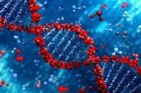 Test ADN predispozitie la peste 30 boli autoimune