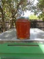 Vand miere de albine poliflora
