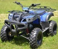 ATV Mega Grizzly 125cc Import Germania