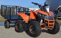 ATV 125 Mega Warrior Import Germania