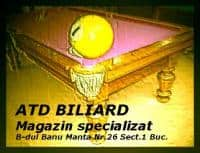 Biliard - sport si agrement