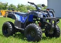 ATV Yamaha Mega Grizzly 125cc Import Germania
