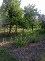 Vand teren pentru casa, comuna Tisau, Judetul Buzau