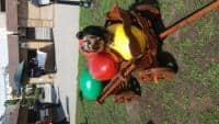 Caut pereche pentru catel yorchsair-tterrier