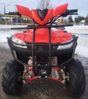 ATV SHINERAY TREX125 LIVRARE24/48H