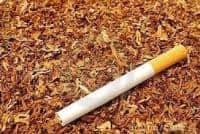 Cel mai bun si mai retabil tutun din tara