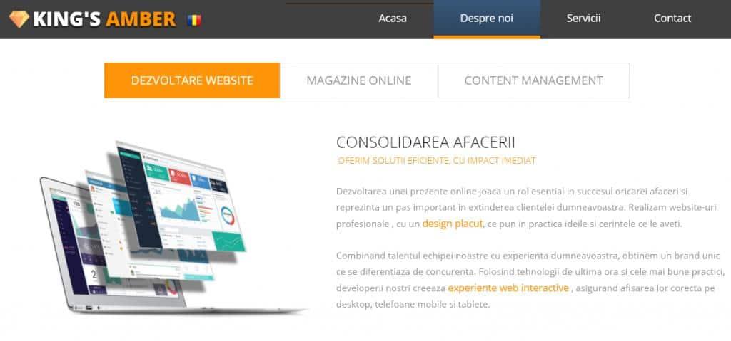 Construire website reponsive, magazin online, SEO