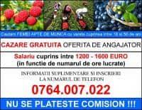 Oferta de munca in SPANIA - salariu cuprins intre 1200 si 1600 EURO (NU SE PLATESTE COMISION)