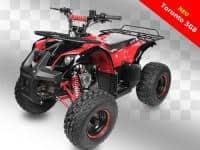 NEW EDITION: ATV BOTTOM TORRONTO>125CMC/RS8