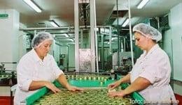 Angajatorul german angajeaza femei/barbati , grupuri/cupluri la fabrica de conserve-1400-1600Euro