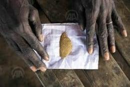 vendre 300 kilogrammes d'or pur
