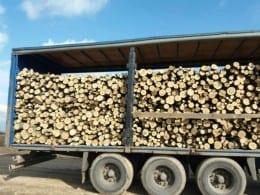 Vand lemne foc: salcam, fag, stejar, carpen- 250ron
