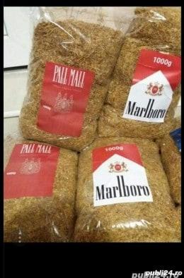 Tutun firicel și tocat