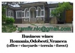Multiproprietate:sediu afaceri vinicole,podgorie vie,padure,terenuri constructie+agricol