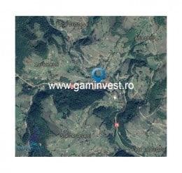 De vanzare teren extravilan si padure in Arieseni, Alba V1555