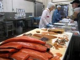 Fabrica de conserve si procesare peste Norvegia/ 2500 euro