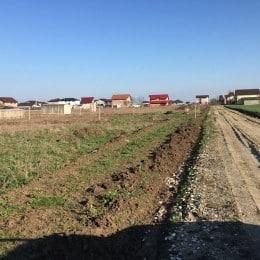 construibil teren casa 371mp comuna berceni