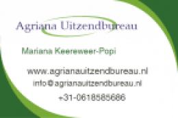 Firma Olandeza angazeaza urgent Zidari, timplari, electricieni, sudori fierbeton
