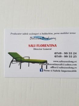 Saltele sezlong si baldachine, perne mobilier de exterior