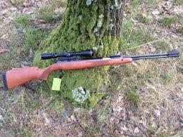 Diana Magnum 460