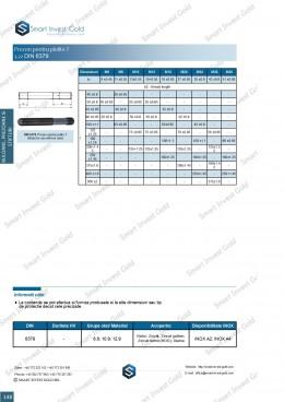 Prezon pentru piulite T DIN 6379