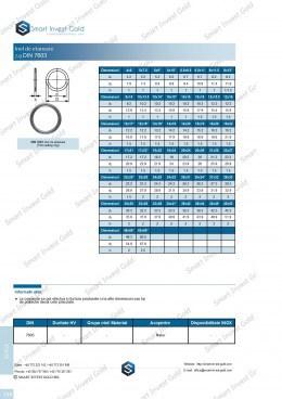 Inel de etansare DIN 7603