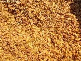 Vand tutun tocat fără praf sau alte impuritati