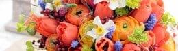 Curs Florar Decorator 40%reducere